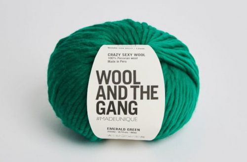 wloczka-Wool and the Gang-Crazy-Sexy-Wool-kolor-emerald green